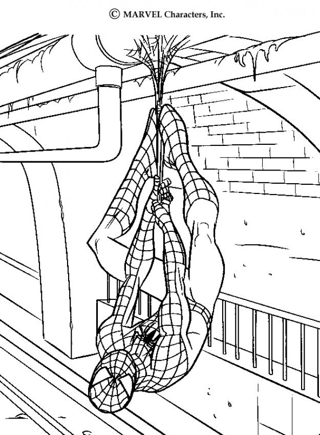 SPIDER-MAN coloring pages : 37 free superheroes coloring sheets