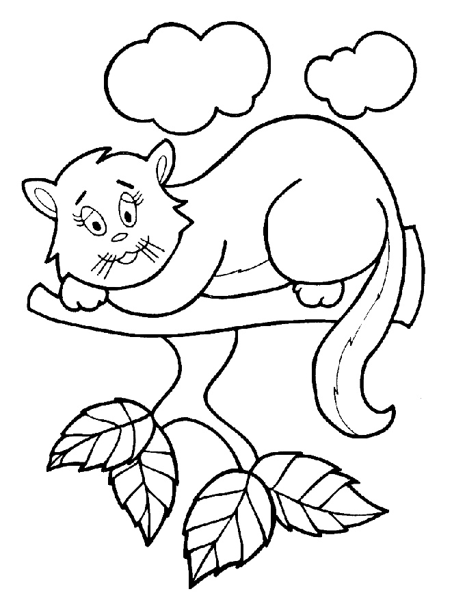 gatos e imprimir Colouring Pages