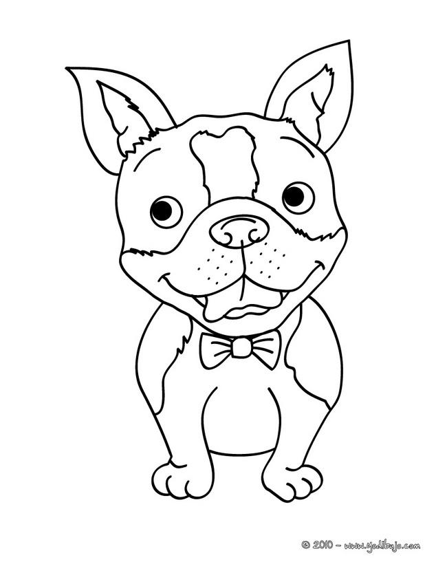 Dibujos De Perros Bulldog Bebé - Imagui - AZ Dibujos para colorear