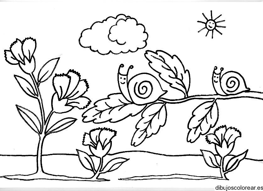 Lujoso Hojas Para Colorear Gratis Para La Primavera Foto - Dibujos ...