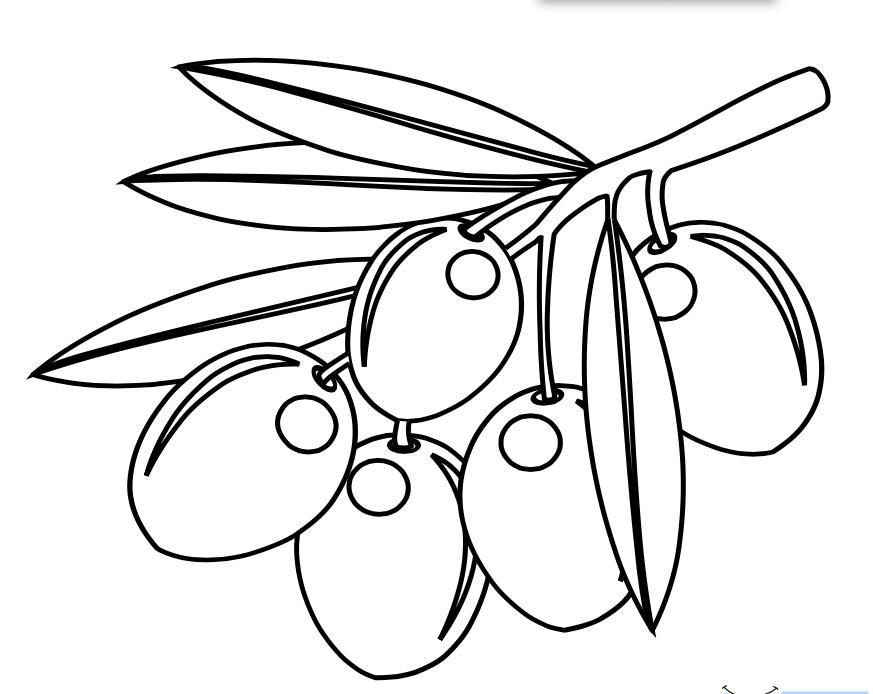 Dibujos De Aceitunas Para Colorear   AZ Dibujos para colorear