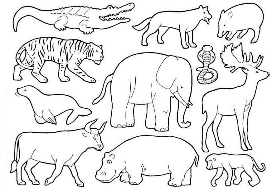 Dibujos Para Colorear y Recortar de Animales Animales Para Recortar y