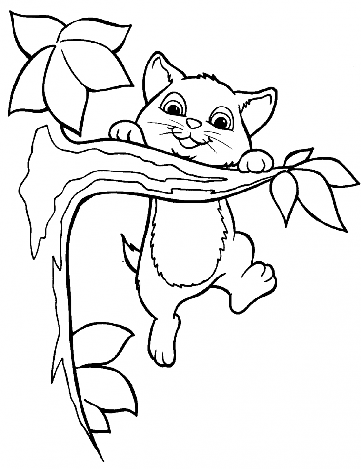 animales tiernos Colouring Pages