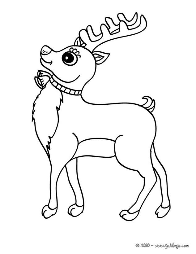 ciervo para colorear