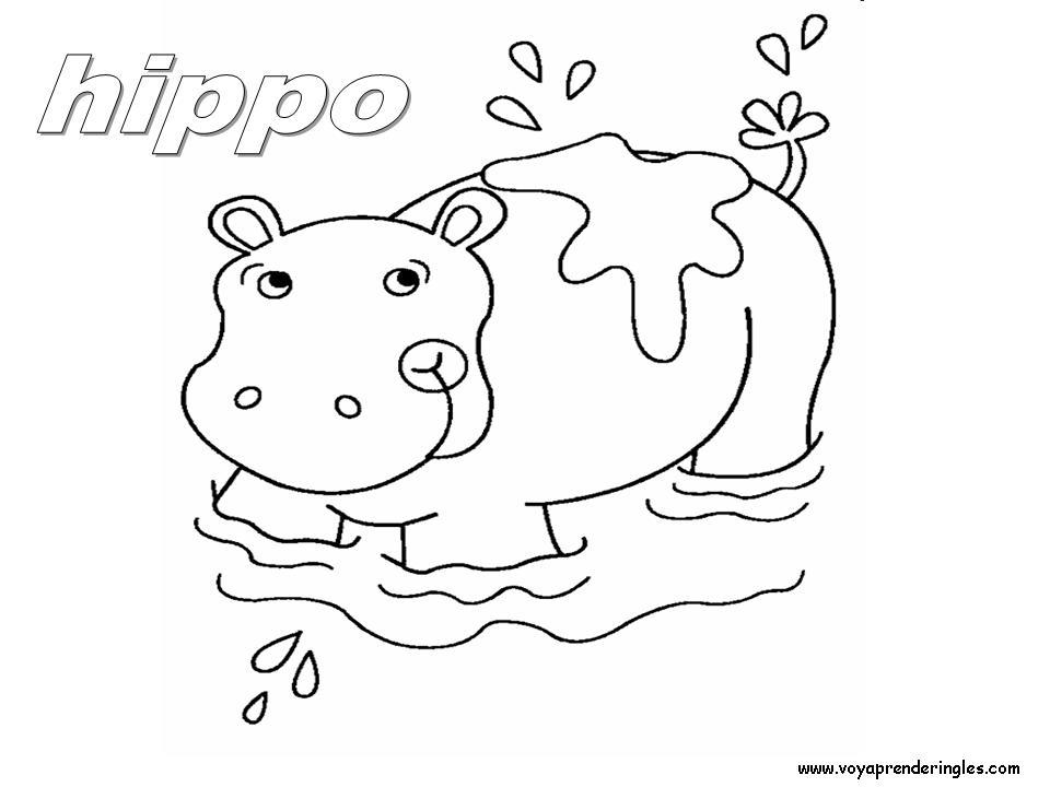 Dibujos Para Colorear Hipopotamos - AZ Dibujos para colorear