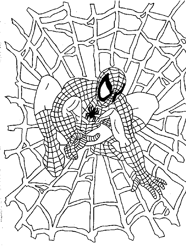 Related Pictures Spiderman Para Pintar Car Pictures