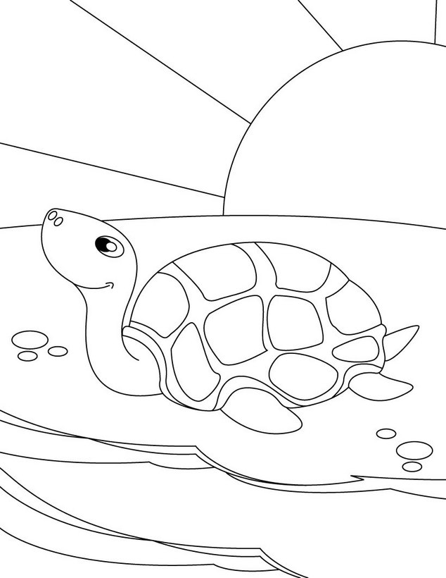 LA TORTUGA CAMINANDO Colouring Pages