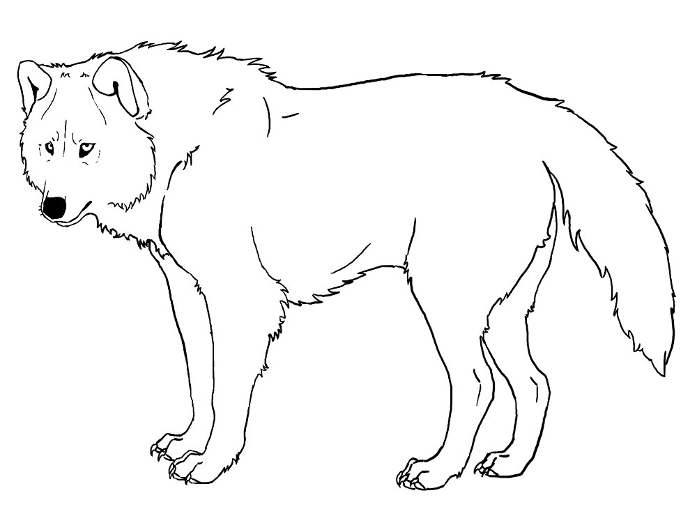 Lobos – Descargar Gratis Dibujos Para Colorear. - AZ Dibujos para ...