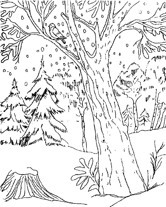 dcRnMxqcz as well as zoo animals coloring pages 1 on zoo animals coloring pages besides zoo animals clip art black and white on zoo animals coloring pages along with zoo animals coloring pages 3 on zoo animals coloring pages also with zoo animals coloring pages 4 on zoo animals coloring pages