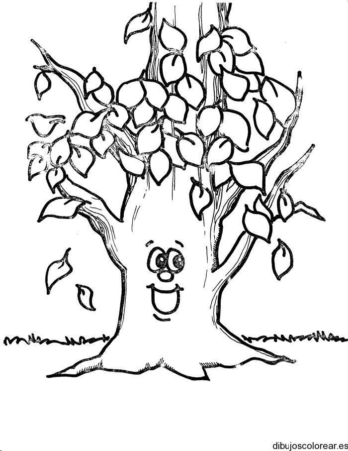Arboles Colorear - AZ Dibujos para colorear