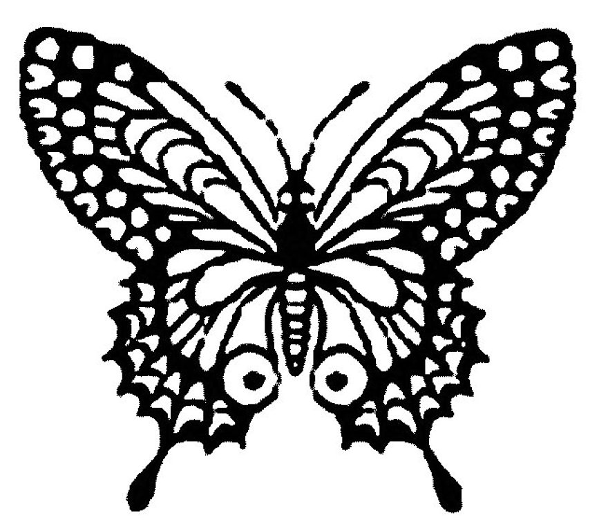 Pin Dibujo Mariposa Monarca Hermosa Para Colorear Y Tattoo on ...