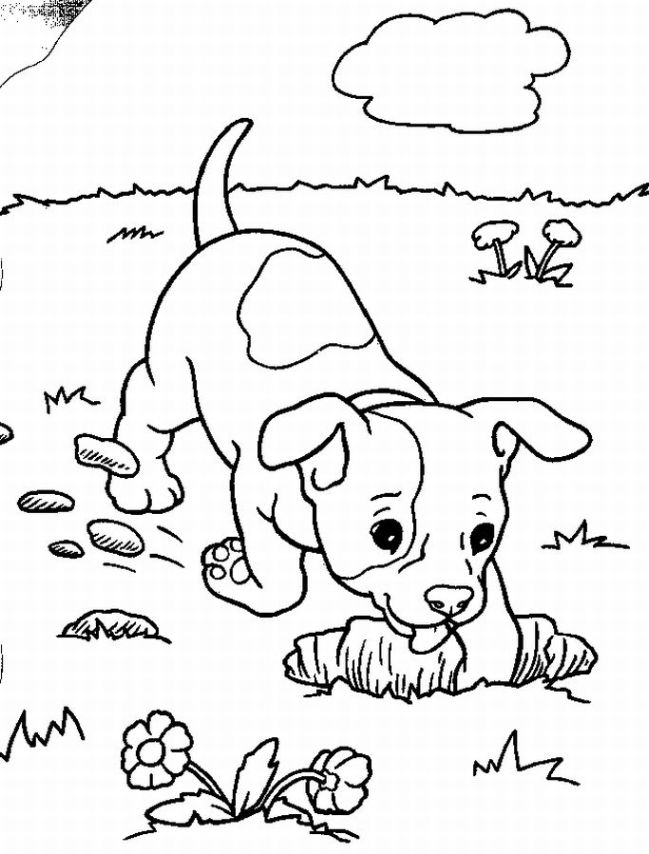 Cute baby Dog Coloring Pages to Print | Color Printing|Sonic ...