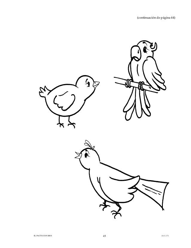 7 Dios Hizo Los Peces Y Las Aves  AZ Dibujos para colorear