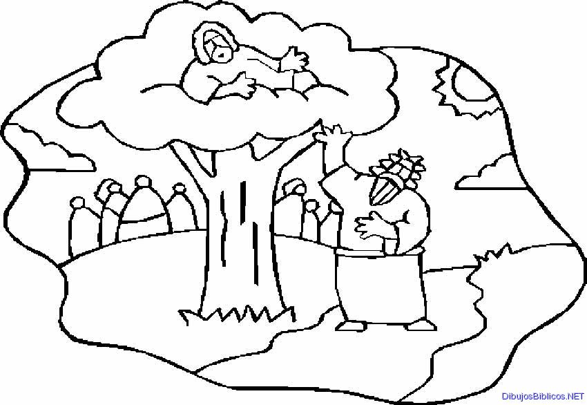 zaqueo coloring pages - photo #47