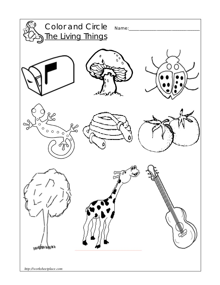 Free Non Living Coloring Pages