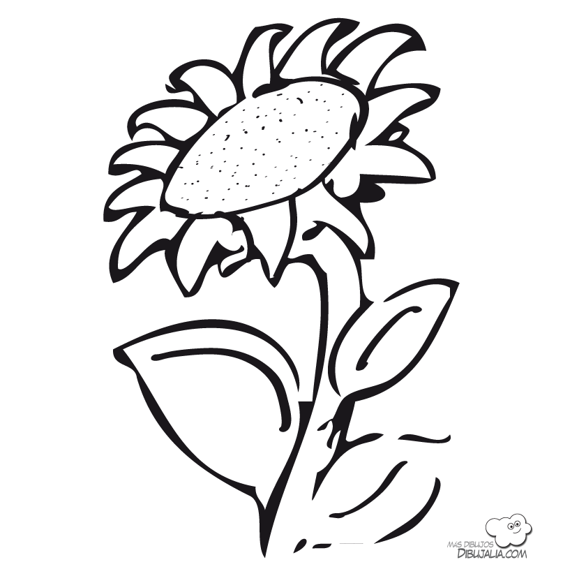 Girasoles Para Colorear  AZ Dibujos para colorear