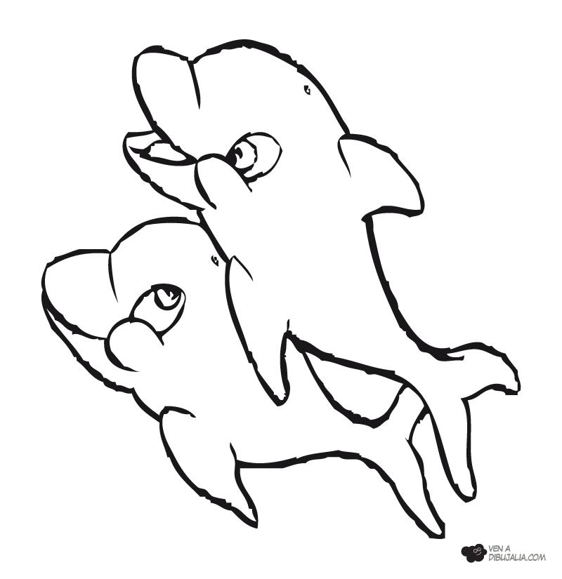 Delfines Para Colorear E Imprimir  AZ Dibujos para colorear
