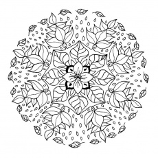 mandalas coloreados